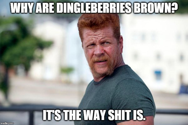 Dingleberries